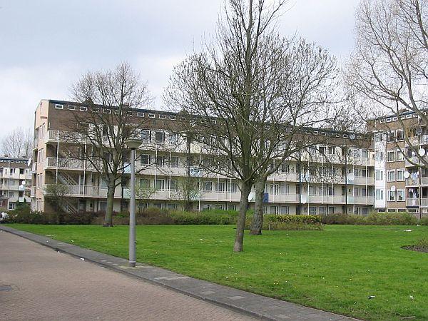 hoge flats marconistraat