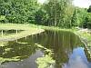 Cruysbergen, Bussum